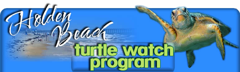 Welcome to Holden Beach Turtle Watch Program